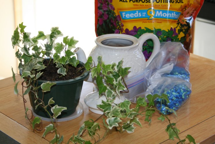 Ivy plant in green pot, white teapot, bag of blue and green gravel and a bag of potting soil on a wood bench
