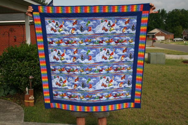 Flying Zebra Baby Quilt Finished