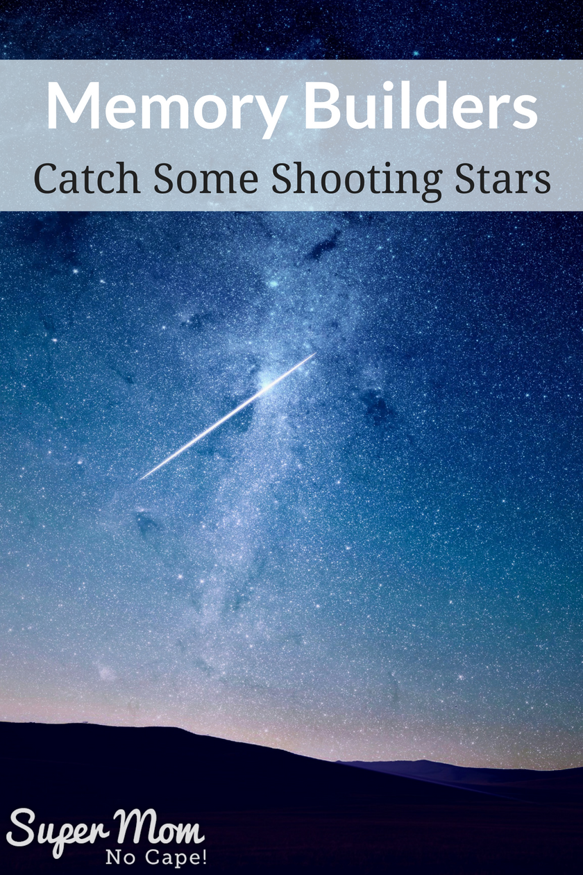 Memory Builders - Take the family out to watch a meteor shower