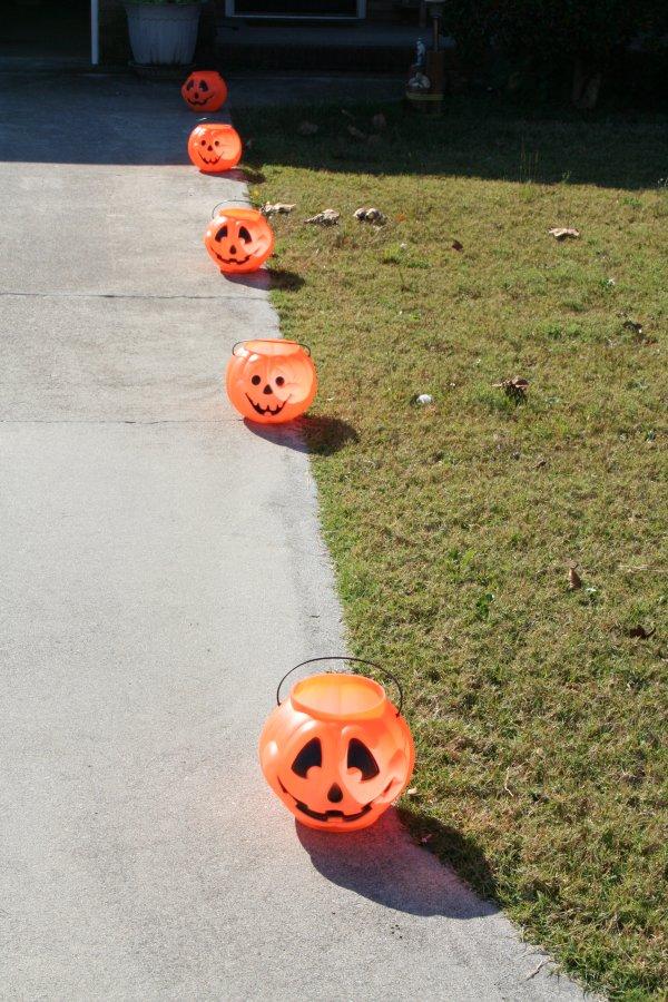 Pumpkins lining the driveway