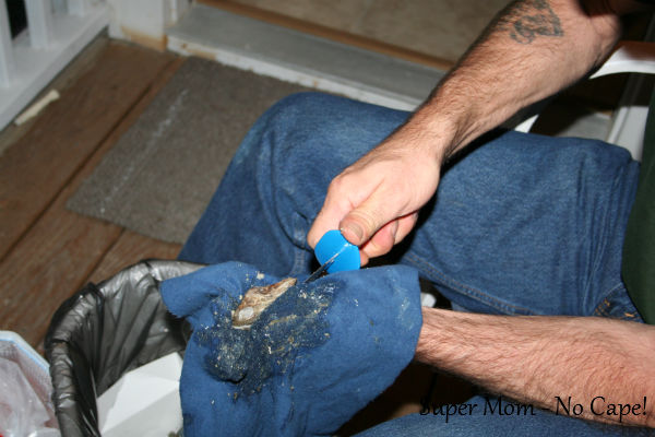 Continue to slide the shucking tool into the oyster while twisting until top shell is loose.