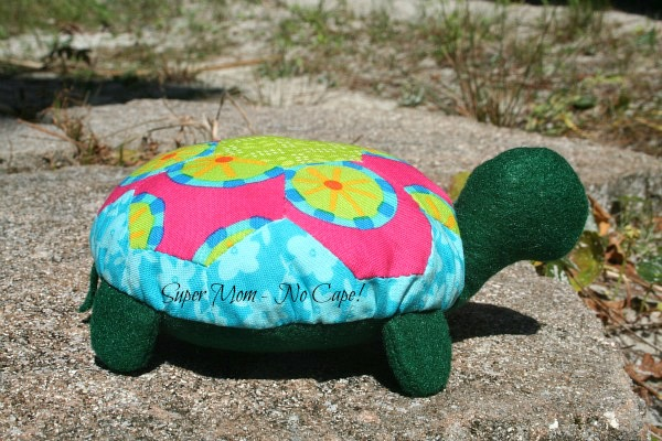 Lexie the Hexie Turtle 1