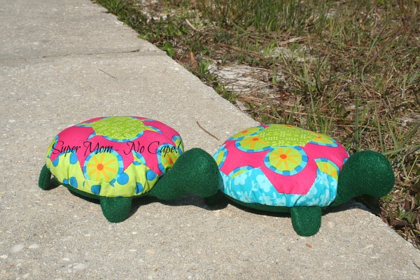 Lexie the Hexie Turtle and her new BFF