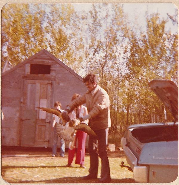 Dad with injured hawk