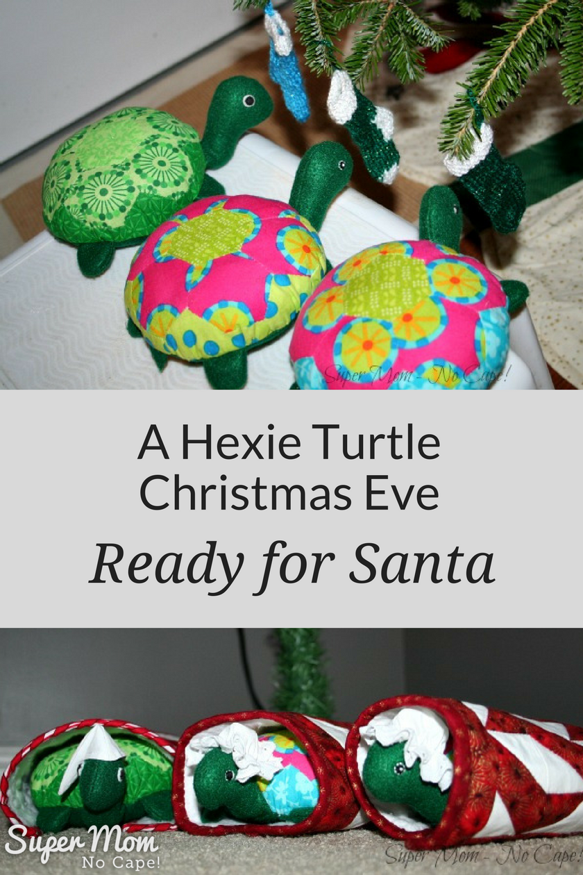 A Hexie Turtle Christmas Eve - Ready for Santa