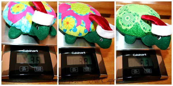 Photo Collage of Turtle Weighing themselves