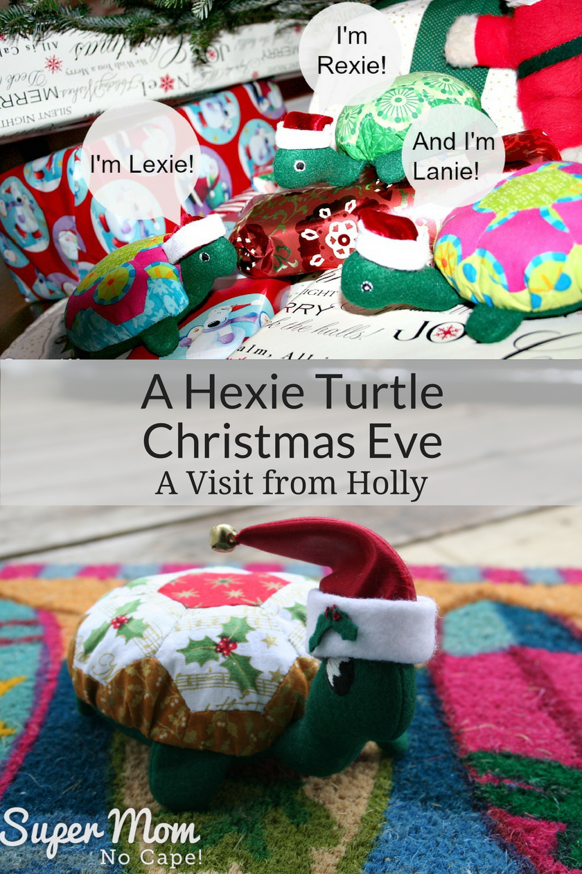 A Hexie Turtle Christmas Eve - A Visit from Holly