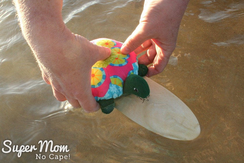 Lexie the Hexie Turtle on her surf board in the water