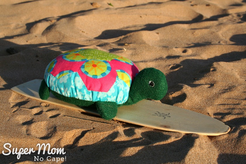 Lexie the Hexie Turtle on her surf board