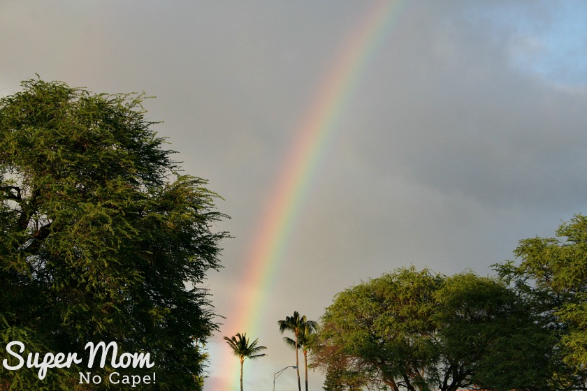 Rainbow over Kam III