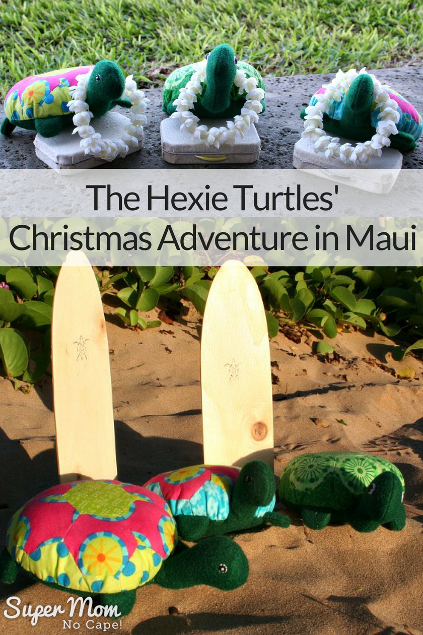 The Hexie Turtles' Christmas Adventure in Maui, HI