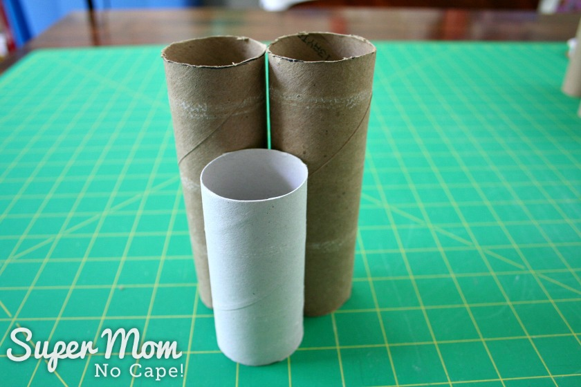 Size comparison between toilet paper rolls and paper towel rolls