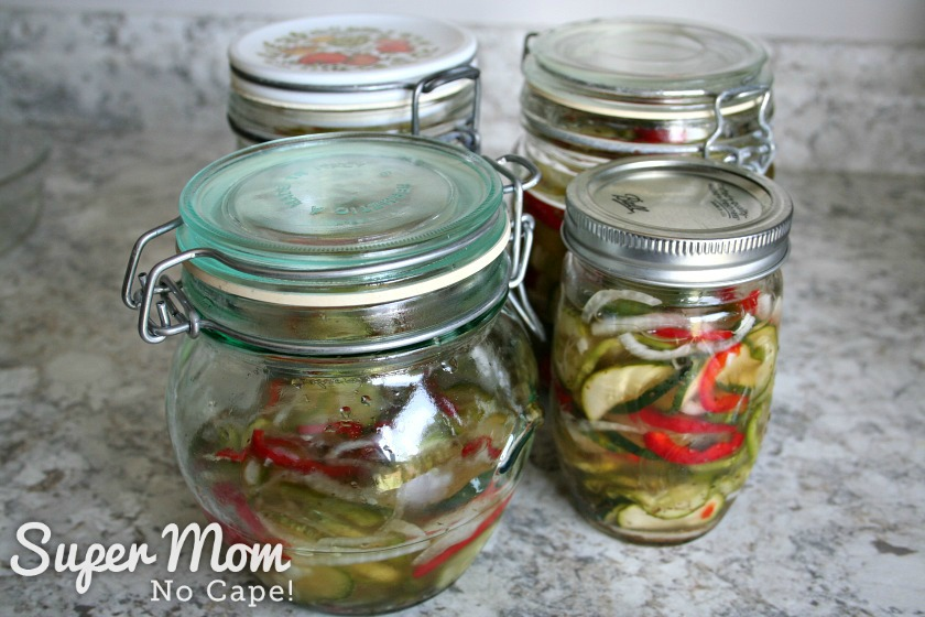 Refrigerator Pickles divided up for four families