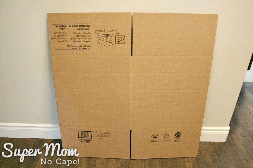 Large shipping box that needs to be downsized to hold the DIY Christmas Wreath Kit
