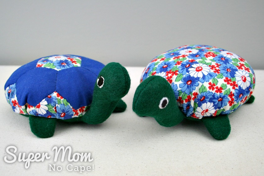 Lexie the Hexie Turtle and Her BFF Daisy
