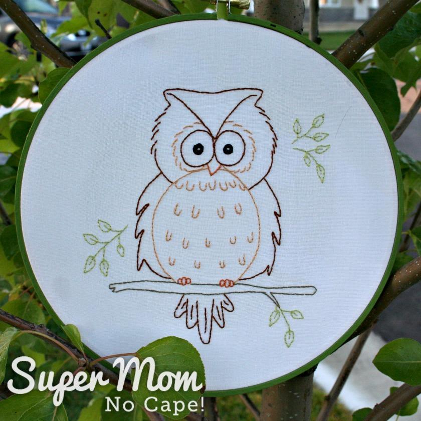 Hooped Owain Owl in tree