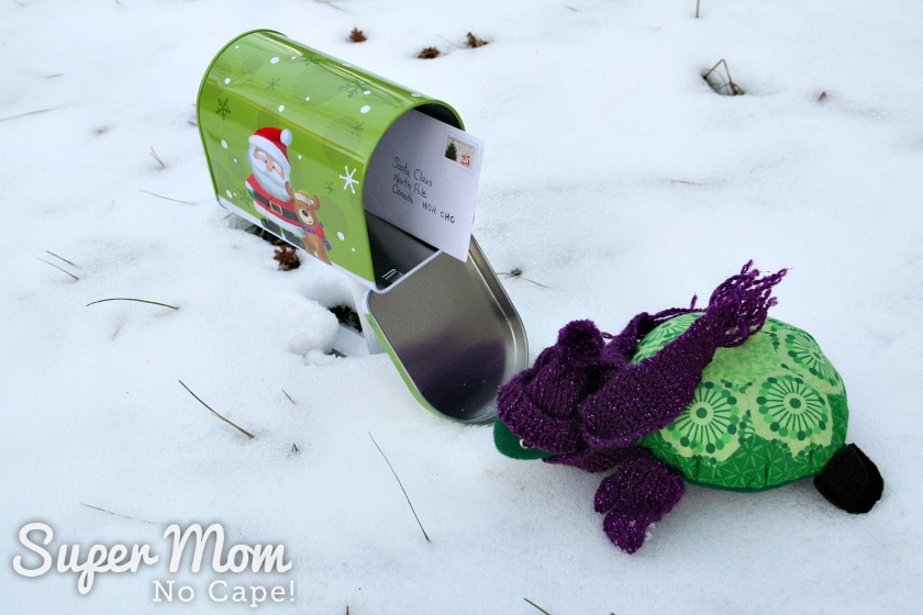 Rexie Hexie Turtle dressed in toque, mitts and scarf beside an open mail box.