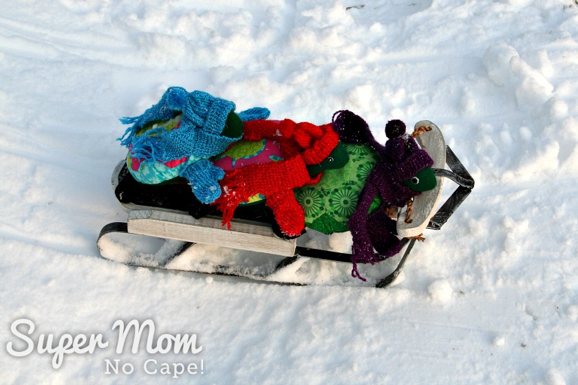Sled and turtles at the bottom of the sledding hill